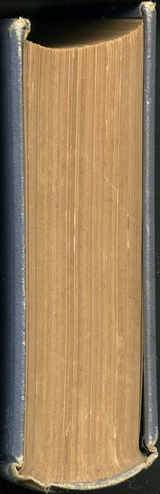 "Head of the 1887 James Nisbet & Co. ""New ed. Golden Ladder Series"" Reprint"