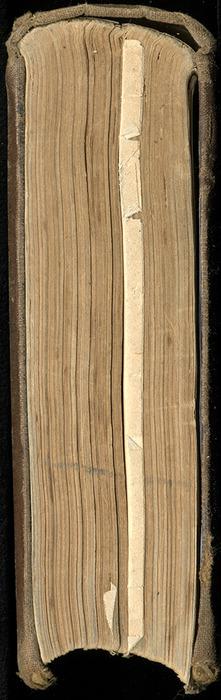 Tail of the 1879 Li-Quor Tea Co. Reprint