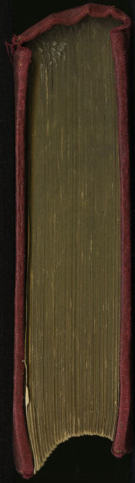 Head of the [1897] Bliss, Sands & Co. Reprint