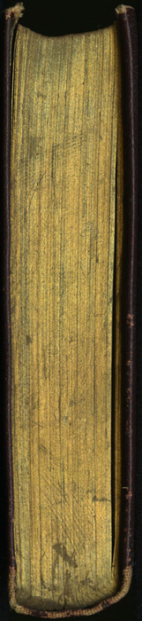 "Head of the [1894] A. L. Burt Co. ""Burt's Library of the World's Best Books"" Reprint"