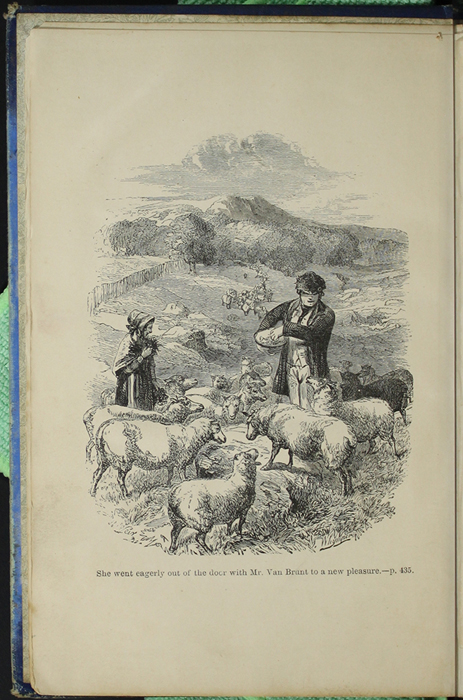 Frontispiece to the [1890] Frederick Warne & Co. Reprint Depicting Mr. Van Brunt Tending His Flock