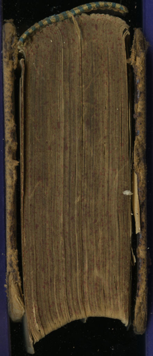 Tail of the [1874] William Nicholson & Sons, S.D. Ewins & Co. Reprint