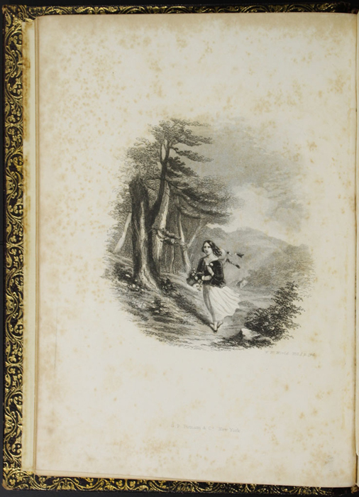 "Frontispiece to the 1853 G.P. Putnam & Co. ""Illustrated Edition"" Reprint, Depicting Ellen in the Woods"