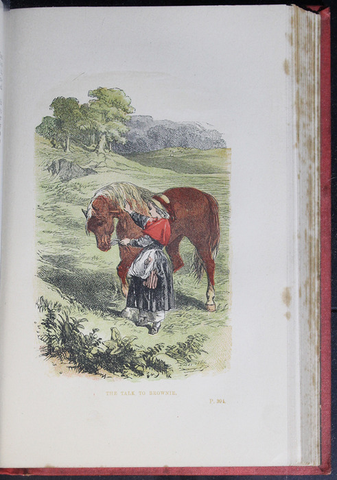 """Illustration on Page 394a of the 1879 James Nisbet & Co. """"Golden Ladder Series"""" Reprint Depicting the Talk to Brownie"""