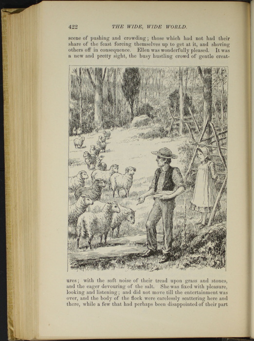 "Illustration on Page 422 of the 1892 J.B. Lippincott Co. ""New Edition"" Reprint Depicting Mr. Van Brunt Tending His Flock"