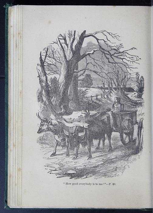 8DESWarne_[1884]_089B_ed_web