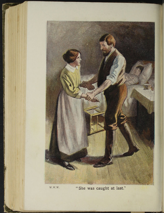 Illustration on Page 196b of the [1907] Collins' Clear-Type Press Reprint Depicting Mr. Van Brunt Catching Nancy at Ellen's Sickbed