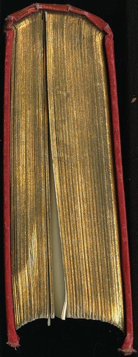"Tail of the [1896] Walter Scott, Ltd. ""Complete Ed."" Reprint"