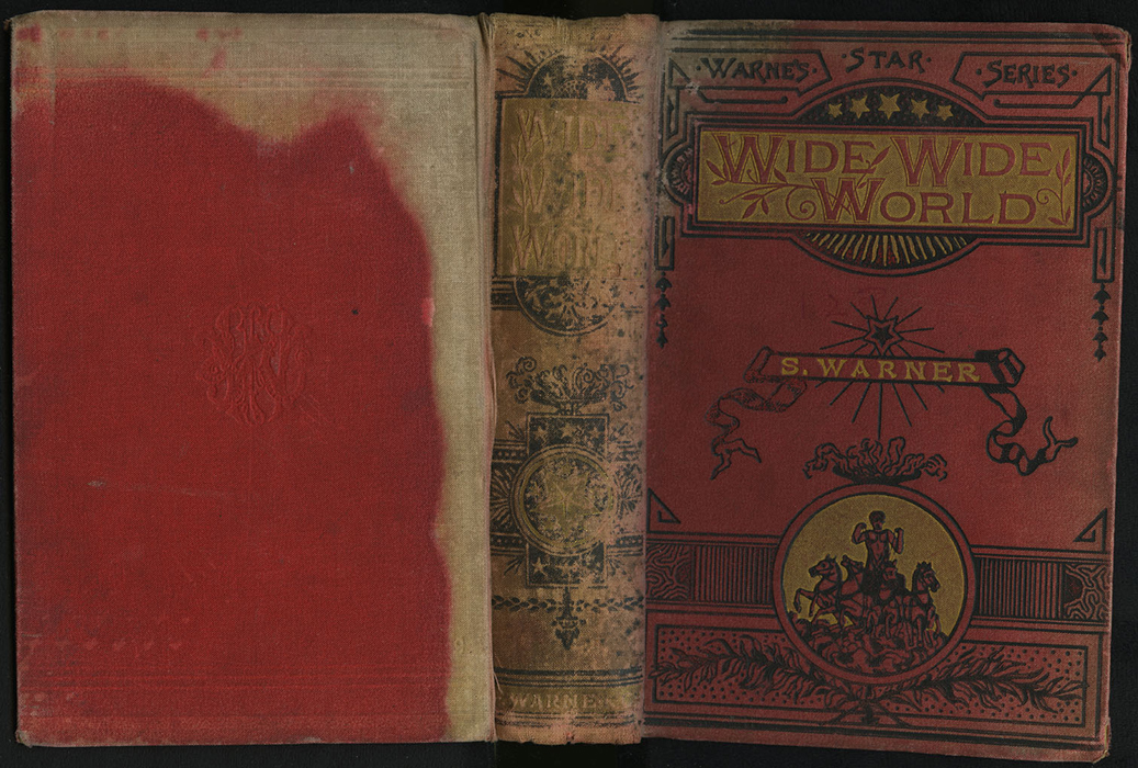 "Full Cover of the [1890] Frederick Warne & Co. ""Star Series"" Reprint"