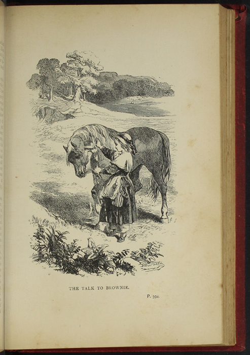 Illustration on Page 394a of the [1893] James Nisbet & Co. Reprint Depicting Ellen and The Brownie