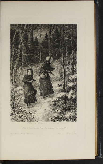 Illustration on Page 236a of Volume 1 of the 1888 J. B. Lippincott Co. Reprint Depicting the Snow Storm