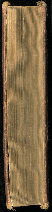 """Fore Edge of the 1886 James Nisbet & Co. """"New ed."""" Reprint"""