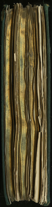 "Fore Edge of the [1893] Walter Scott, Ltd. ""Emerald Library"" Reprint"