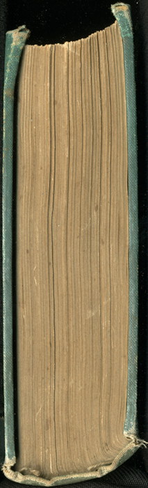 3DES_Routledge_[1889]_binding_head_web.jpg