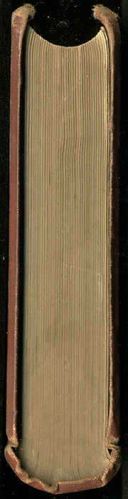 "Head of the 1883 James Nisbet & Co. ""New Edition"" Reprint"