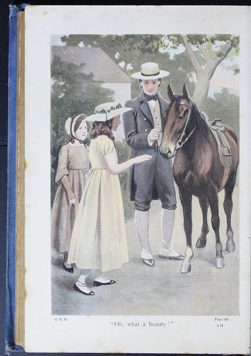"Illustration on Page 346b of the [1910] Collins' Clear-Type Press ""The Challenge Series"" Reprint Depicting Ellen Meeting Brownie"