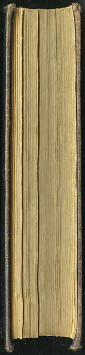 "Fore Edge of the 1869 J. B. Lippincott & Co. ""New Edition"" Reprint"