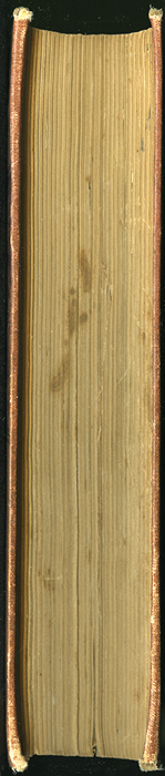 "Fore Edge of the 1891 J. B. Lippincott Co. ""New Edition"" Reprint"