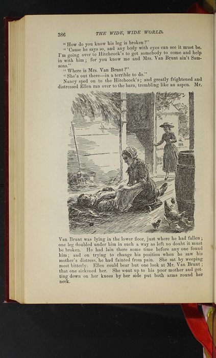 """Illustration on Page 386 of the 1903 J.B. Lippincott Co. """"New Edition"""" Reprint Depicting Mr. Van Brunt's Accident"""