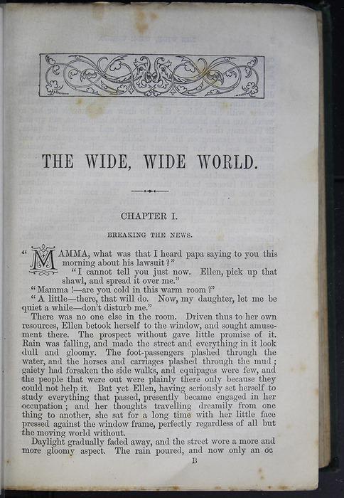 8DESWarne_[1884]_001_ed_web.jpg