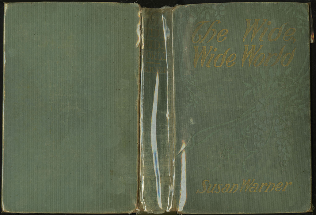 Full Cover of the [1910] R.F. Fenno & Co. Reprint