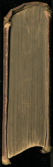 """Head of the 1886 James Nisbet & Co. """"New ed."""" Reprint"""