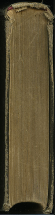 """Tail of the [1895] William L. Allison Co. """"Allison's New Standard Library"""" Reprint"""