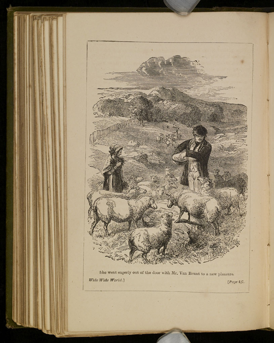 """Illustration on Page 426c of the [1885] Ward, Lock & Co. """"Home Treasure Library, Complete Edition"""" Reprint Depicting Mr. Van Brunt Tending His Flock"""
