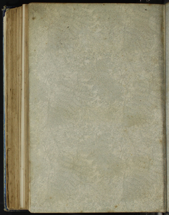 Verso of Back Flyleaf of [1890] Frederick Warne & Co. Reprint