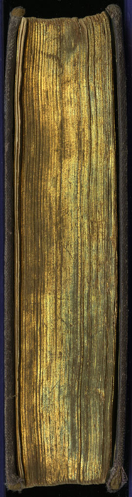 """Fore Edge of the [1867] Milner & Sowerby """"The Wide, Wide World Library"""" Reprint"""