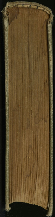 "Tail of the [1900] Donohue Brothers ""Completed and Unabridged Ed."" Reprint"