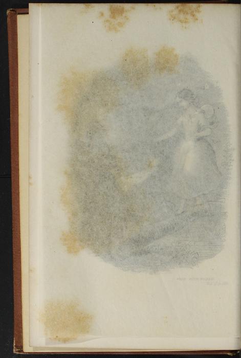 "Verso of Tissue Preceding Title Page Vignette of the 1891 J. B. Lippincott Co. ""New Edition"" Reprint"