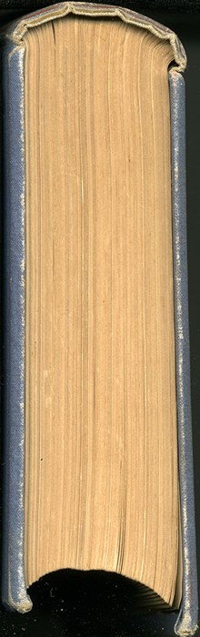 "Tail of the 1887 James Nisbet & Co. ""New ed. Golden Ladder Series"" Reprint"