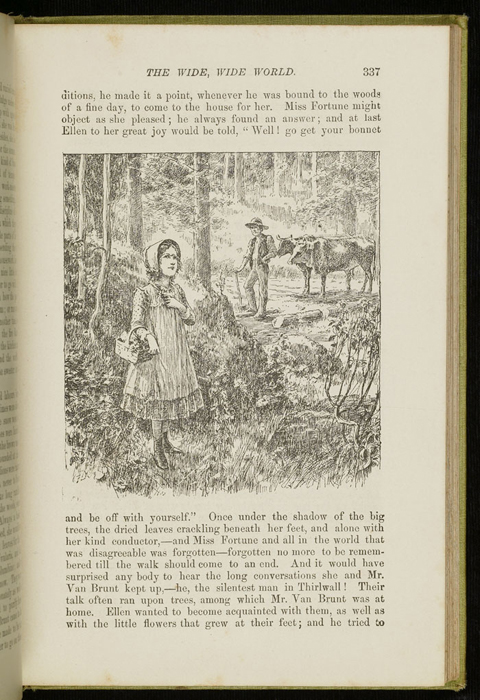 Illustration on Page 337 of the 1896 Hodder and Stoughton Reprint Depicting Ellen in the Woods with Mr. Van Brunt