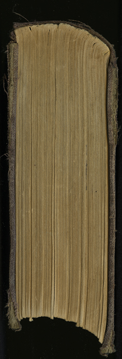 "Tail of the 1869 J. B. Lippincott & Co. ""New Edition"" Reprint"