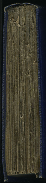 "Head of Volume 1 of the 1853 James Nisbet, Hamilton, Adams & Co. ""New Edition"" Reprint"