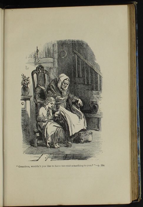 Illustration on Page 254A of the [1890] Frederick Warne & Co. Reprint Depicting Ellen Reading to Grandma