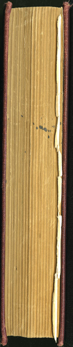 "Fore Edge of the [1898] A. L. Burt Co. ""The Home Library"" Reprint"