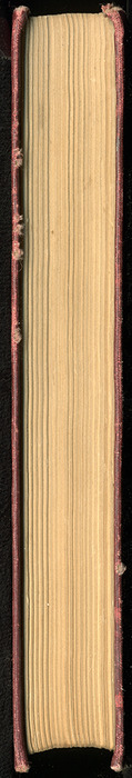 Fore Edge of the [1899] Geo. M. Hill Co. Reprint