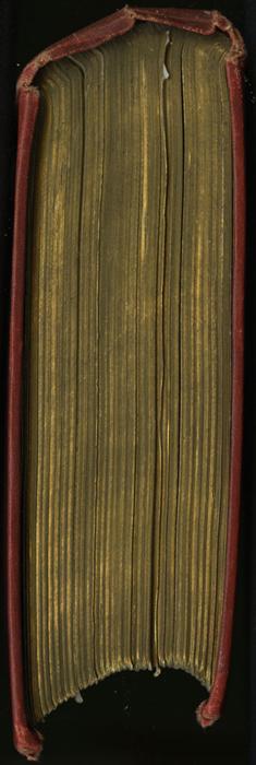 Head of the [1896] Walter Scott, Ltd. Reprint