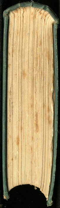 "Tail of the [1884] Frederick Warne & Co. ""Star Series"" Reprint"