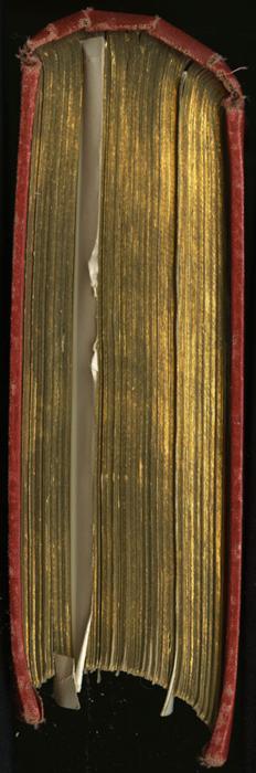 Tail of the [1896] Walter Scott, Ltd. Reprint
