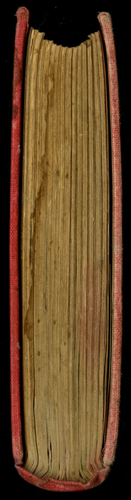 """Tail of the [1882] Ward, Lock & Co. """"Lily Series, Complete Edition"""" Reprint"""