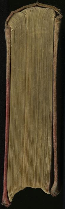 "Head of [1890] Frederick Warne & Co. ""Star Series"" Reprint, Version 2"
