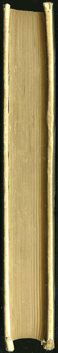 Fore Edge of Volume 2 of the [1898] F. M. Lupton Publishing Co. Reprint