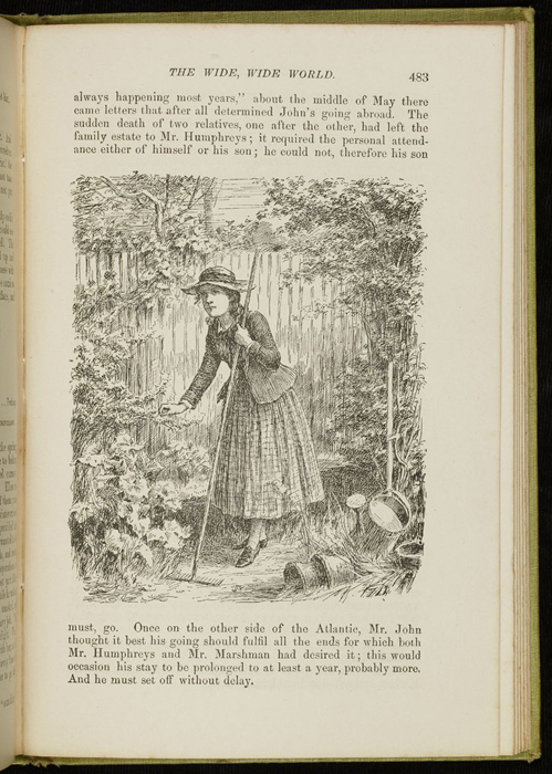 Illustration on Page 483 of the 1896 Hodder and Stoughton Reprint Depicting Ellen Tending the Garden in Scotland