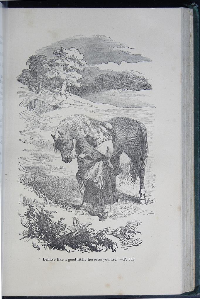 8DESWarne_[1884]_392B_ed_web.jpg