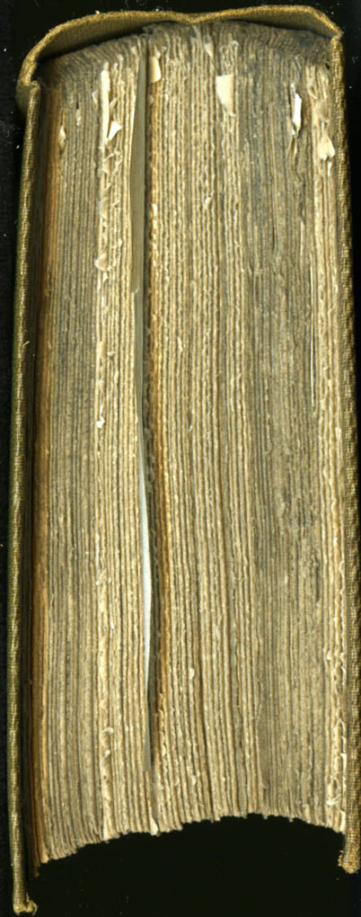 47CIA_Routledge_1853_Head_web.jpg