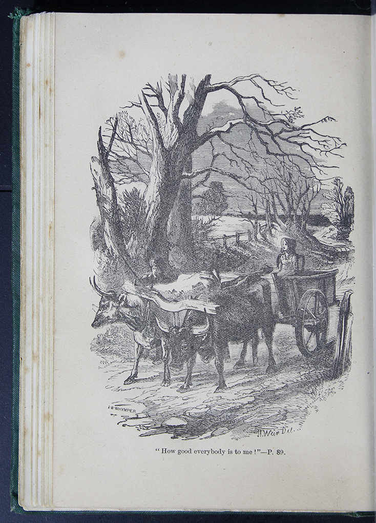 8DESWarne_[1884]_089B_ed_web.jpg