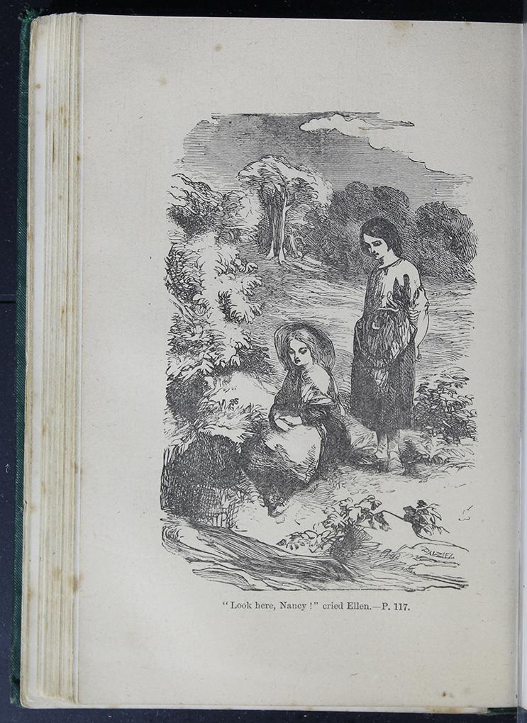 8DESWarne_[1884]_117B_ed_web.jpg